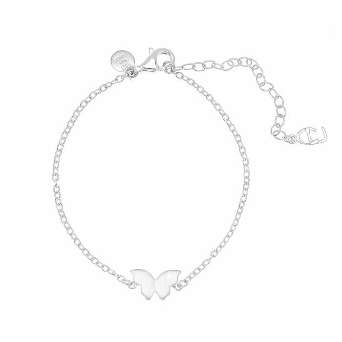 butterfly-brace-silver1