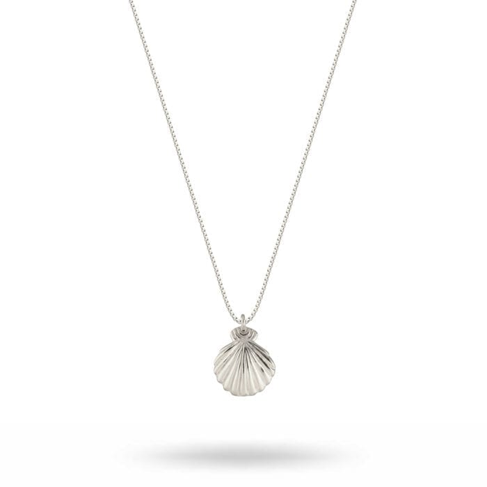 NS1240-1-Beaches-Shell-necklace-silver